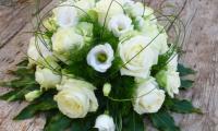 passie-flora-11.jpg