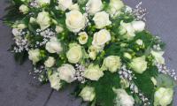 passie-flora-12.jpg