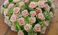 passie-flora-14.jpg