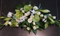 passie-flora-6.jpg